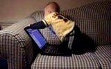 facebook'a giremeyen bebek çıldırıyor!