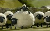 shaun the sheep - of the ba!