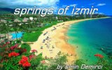 emin demirci - springs of izmirorchestr