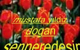mustafa yldz dogan  sen nerdesin