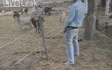 Elektrikli Tele İşeyerek Çarpılmak!