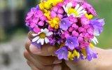 Orhan Gencebay - Mevsim Bahar Olunca ( Orijinal Görüntü)
