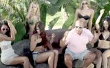 DJ Felli Fel - Have Some Fun (feat. Cee Lo, Pitbull & Juicy J) view on izlesene.com tube online.