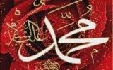 Timurtaş Hoca - Allah Yolunda Edep